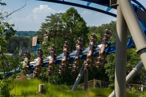 A side view of the Wild Eagle coaster at Dollywood. (Photo: Dollywood)