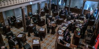 The Tennessee Senate Chambers. (Photo: John Partipilo)