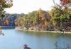 Paris Landing State Park (tn.gov)