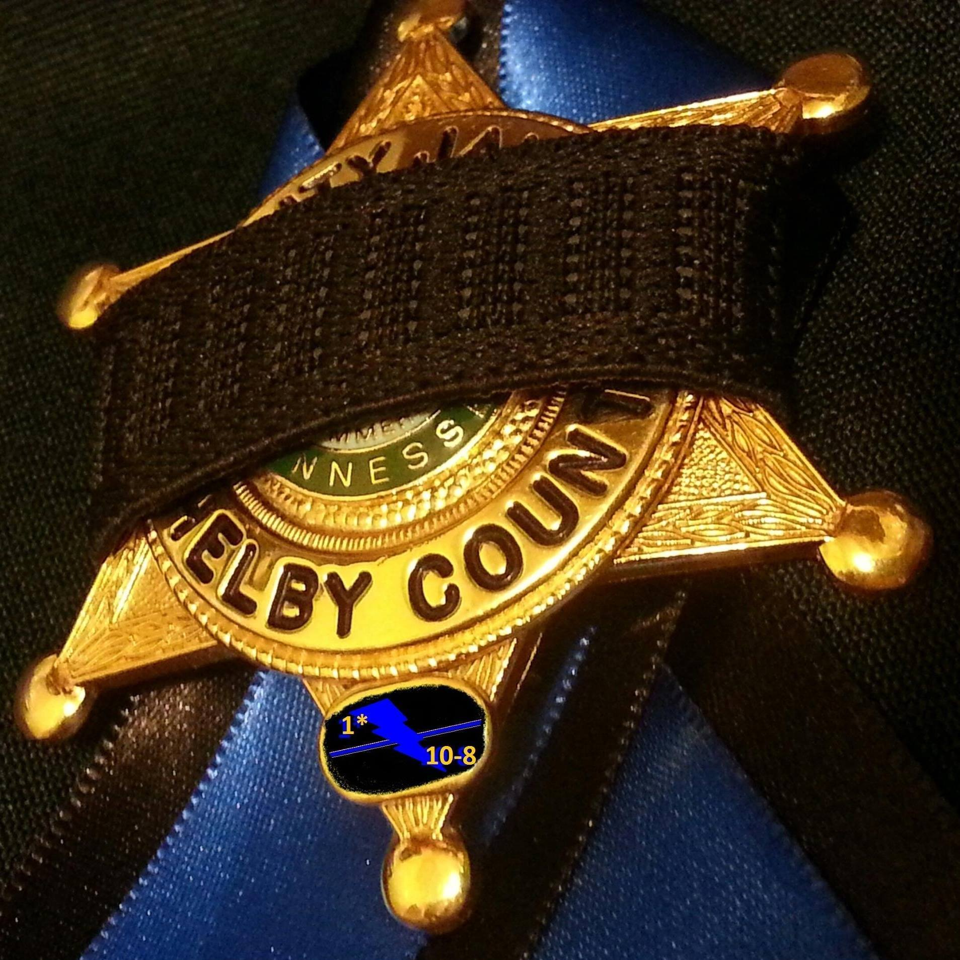 Shelby County Sherriff's Department badge. (Photo: SCSD Facebook)